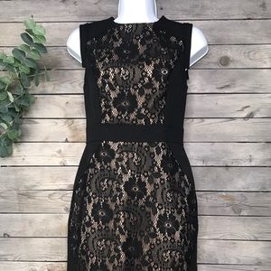 Adrianna Pappell | black & nude lace sheath dress